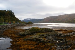 Loch duich (gmj49 Thanks for over 1.9 million views) Tags: water sony loch duich dornie eileandonancastle gmj a350