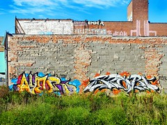 Ayer x Stori (germanfriday) Tags: street art graffiti detroit ayer stori detroitgraffiti germanfriday