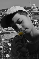 '.... (Dimitra Kirgiannaki search engine the whole spring) Tags: boy blackandwhite monochrome face kids portraits greek photography innocent son greece daisy tender dimitra selectivecolors palaiofaliro nikond3100 kirgiannaki