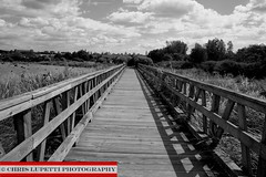 Wooden Bridge (Chris Lupetti: www.chrislupetti.com) Tags: bridge blackandwhite monochrome bridges bwphotography blackandwhitephotography lupetti chrislupetti chrislupettiphotography chrisjudelupetti