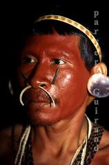 Matis (serge guiraud) Tags: brazil portrait festival brasil amazon para tribal exhibition exposition xingu tribe ethnic matogrosso jabiru tribo brésil plume amazonia tribu amazonie matis amazone etnic amérique xavante asurini amérindien etnia kaiapo gaviao kuarup ethnie yawalapiti kayapo javari kuikuro xerente peinturecorporelle kalapalo karaja mehinako kamaiura yawari artamérindien sudamérique tapirapé peuplesindigenes povoindigena parcduxingu parquedoxingu sergeguiraud jabiruprod expositionamazonie artdelaplume artducorps bassinamazonien amazon'stribe amazonieindidennecom basinamazonien zo'é hetohoky parqueindidigenadoxingu jungletribes populationautochtones indiend'amazonie