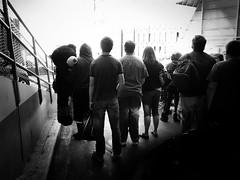 (sparth) Tags: seattle blackandwhite bw ferry blackwhite washington noiretblanc silhouettes teddybear wa washingtonstate ricoh bnw 2012 grd grd4 ricohgrdiv grdiv ricohgrd4
