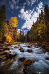 Crystal Creek Canyon Cascades by Matt Anderson (Matt Anderson Photography) Tags: fall water creek rocks stream crystal outdoor hiking fallcolors scenic canyon adventure destination flowing wyoming grandtetons cascade lansdscape mattandersonphotography