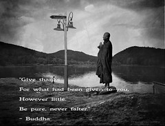 Buddha Quote 42 (h.koppdelaney) Tags: wallpaper art freedom peace image quote buddha prayer joy picture happiness monk buddhism zen luck meditation spirituality wisdom pure stillness mahayana thankfullness hinayana koppdelaney
