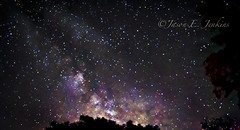 30 Second Universe (j-dub1980(THANK YOU FOR 100k+ Views)) Tags: nightphotography newjersey sagittarius nebula astrophotography nightsky lightroom milkyway longexposures highpointstatepark sussexcounty stokesstateforest photomatix adobecreativesuite flickraward Astrometrydotnet:status=solved widefieldastrophotography adobelightroom3 Astrometrydotnet:version=14400 summersolstice2012 Astrometrydotnet:id=alpha20121097789905
