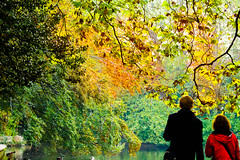 Admiring the colours (Steve-h) Tags: park blue autumn trees ireland red dublin orange woman man color colour green art tourism nature water colors girl leaves yellow lady canon eos design pond couple europe colours zoom ducks tourists telephoto handheld recreation aerlingus duckpond spotmetering ststephensgreen aperturepriority steveh canonef100400mmf4556lisusm 100mm400mm canoneos5dmkii canoneos5dmk2 bestcapturesaoi elitegalleryaoi fadeleted