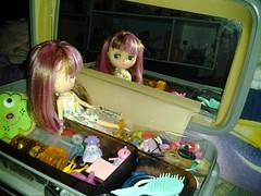 Jillys train case