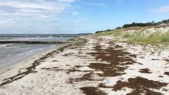 Strand, Buhne und Dne (hellrac3r) Tags: rgen ostsee germany balticsea