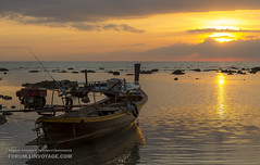 Sunset with fishing boat (forum.linvoyage.com) Tags: sunset fishing boat tide sun sky gold color clouds night        ship thailand phuket beach water red blue nature white art light landscape summer sea yellow lake house orange golden country yacht              andaman outdoor  vehicle serene shore seaside    samui krabi pattaya yachting waterfront bay