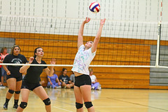IMG_7380 (SJH Foto) Tags: girls volleyball high school scrimmage northstar boswell pa pennsylvania action shot