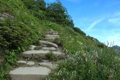 Dixence (bulbocode909) Tags: valais suisse dixence montagnes nature sentiers arbres vert bleu