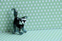 What's new pussycat? (Maria Godfrida) Tags: animals pets cat pussycat glass image sculpture statue figure small tiny