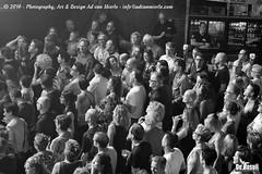 2016 Bosuil-Het publiek bij De Dijk 2-ZW