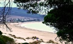 Bolonia (Cdiz) (ZAP.M) Tags: playa paisaje naturaleza nature beach airelibre bolonia cdiz andaluca espaa flickr zapm mpazdelcerro nikon nikond5300
