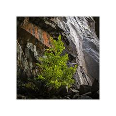 (andrewatkinson.co.uk) Tags: 50c cumbria hasselblad lakedistrict lakes