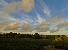 Cirrus and Fair Weather cumulus (Richard Bougeard) Tags: clouds jersey weather