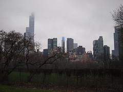 obscured skyline (amysh) Tags: centralpark sky trees lateafternoons skyline newyork newyorkcity ny nyc olympuse420