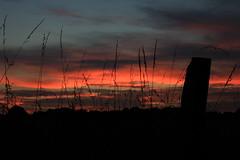 Burning sky (Yarik.OK) Tags: red sky orange nature silhouette burning fields