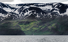 Mountains at the Skjalfandi fjord (lycienjantos) Tags: snow black green volcano iceland fjord montains hsavk skjlfandi d7000