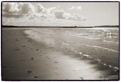 White Rock (PiscesDreamer) Tags: ocean sea canada seaweed beach water clouds pier sand waves britishcolumbia shoreline shore whiterock