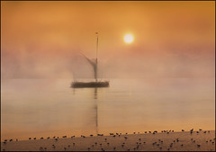 Thames Barge at sunrise (adrians_art) Tags: mist beach water weather birds fog sunrise reflections boats crafts gulls sails silhouettes shore rivers vessels thamesbarge