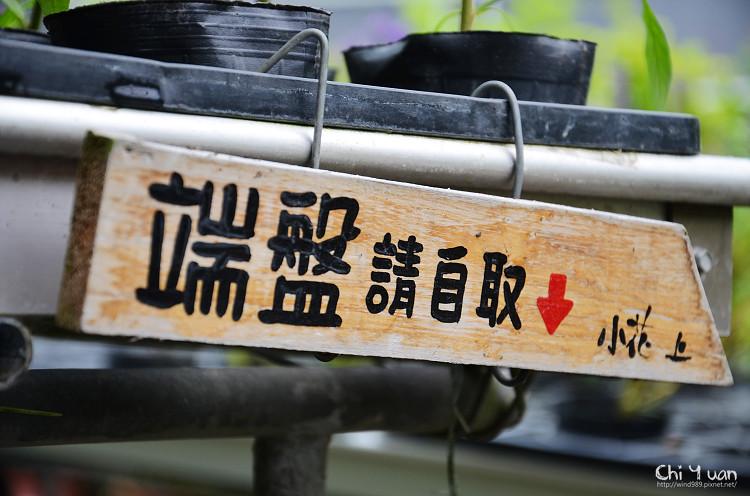 多肉one16.jpg