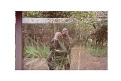 (daveyp.) Tags: film 35mm canon vista plus agfa af35ml
