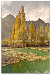 SHIGAR VALLEY, PAKISTAN (TARIQ HAMEED SULEMANI) Tags: pakistan tourism colors trekking canon photography sensational tariq skardu supershot theunforgettablepictures concordians sulemani shigar tariqhameedsulemani