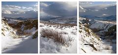 Snowy triptych (YorkshireSam) Tags: winter england snow clouds landscape countryside nikon scenery yorkshire north moor dales hawes wensleydale samsalt yorkshiresam
