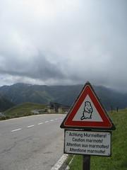 Achtung Murmeltiere! (Rami J) Tags: roadsign marmots murmeltiere grosglockner