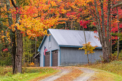 Fall in Vermont (whoisnd) Tags: autumn red cold color green fall leaves yellow barn canon season maple vermont path peak dry falling fallingleaves stowe chill 70200 vt nitin chlorophyll 1div nitindangwal