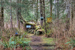 The Wacky Woods - Fanny Bay, BC, Canada (Toad Hollow Photography) Tags: wood canada art heritage history strange wonderful woods gallery bc outdoor political fineart exhibit carving historic vancouverisland mystical wonderland magical hdr enchanted whimsical fannybay sawchuk georgesawchuk