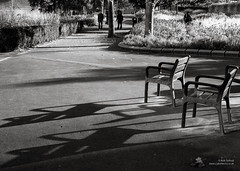 Seats (cybertect) Tags: morning autumn shadow sunlight london seat se1 londonse1 pottersfields panasonicg2