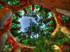 Circle Of Light (Phyllis74) Tags: park vines centralpark kentucky louisville pillars