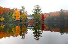 Autumn Reflection (Denis Tangney Jr) Tags: autumn fall newengland newhampshire fallfoliage foliage greatnorthwoods