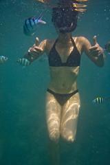 DSC09574 (andrewlorenzlong) Tags: fish swimming swim thailand snorkel sam snorkeling bikini kohchang kohrang kohrangyai korangyai