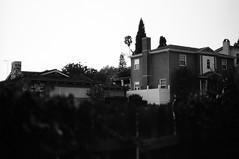 Across The Street (bhop) Tags: los angeles california bw blackandwhite black white film kodak trix 400tx kodaktrix iso400 nikon f4 f4s nikkor monochrome filmcamera filmshooter filmisnotdead houses across street over wall feliz