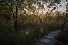 Katherine National Park Cicada Lodge