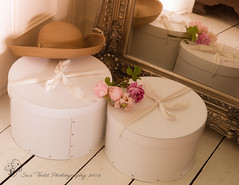 Hazy summer light, hats, Hatboxes and roses (Sue_Todd) Tags: beige clothing colours cream creamy flowers fragrantrose furniture hat hatbox hatboxes hats mirror oldenglishroses photographer pink pinkrose pinkroses roses suetodd suetoddphotography summer sunhat sunhats sweetsmellingrose taupe vegetation fragrant pembe pinkki pinks roosa rosa rose rosy roze rozig rowy vaaleanpunainen