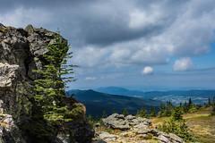 Groer Arber (juergen.treiber) Tags: groserarber bayerischerwald felsen landschaft