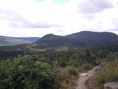 002 - Parc national de la Gaspsie : Mont Ernest Laforce (Arfphandal Forfal Forphan) Tags: trip qubec gaspsie forest tree arbre fort nature water eau park landscape