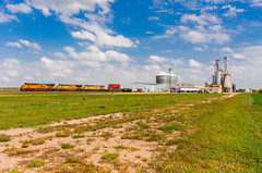 Stacks in Odessa (Troy A. Snead) Tags: odessane intermodaltrains stacktrains upkearneysubdivision