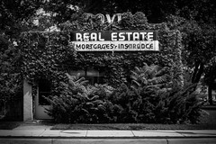 (232/366) Real Estate (CarusoPhoto) Tags: black white bw john caruso carusophoto photo day project 365 366 real estate pentax ks2 smc pentaxa 28mm f28 smcpentaxa28mmf28 building vines covered foliage odd strange everyday banal mundane ordinary retro vintage manual focus beautiful natural light