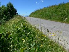 P1000368 (cyclingup.eu) Tags: bike cycle climb rad fahrrad aufstieg steigen fietsen klimmen cyclisme vlo grimper col du joly