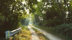 (Cristina Birri) Tags: mattino estate summer passeggiata campagna udine friuli palmanova