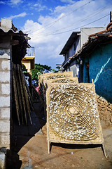 Bullseye for Silk (Anoop Negi) Tags: silk cocoon sericulture india rearing farming fabric fashion industry anoop negi karnataka t hoshalli kankapura road photo photography worm