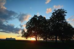 2016_0827Sunset0001 (maineman152 (Lou)) Tags: sun sunset settingsun sky skycolor skycolors skyscape skyscene skyview summersky sunsetclouds clouds nature naturephoto naturephotography landscape landscapephoto landscapephotography summer august maine
