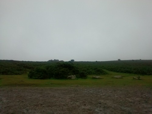 Dartmoor Gloom
