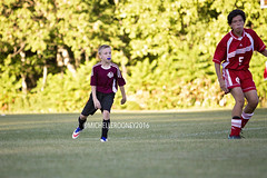 IMG_8982eFB (Kiwibrit - *Michelle*) Tags: soccer boys middle school team mms cony 091316