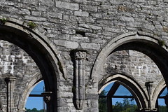 rounded arch, pointy arch (HoosierSands) Tags: boyle coroscommon abbey ruins cistercian ireland ire